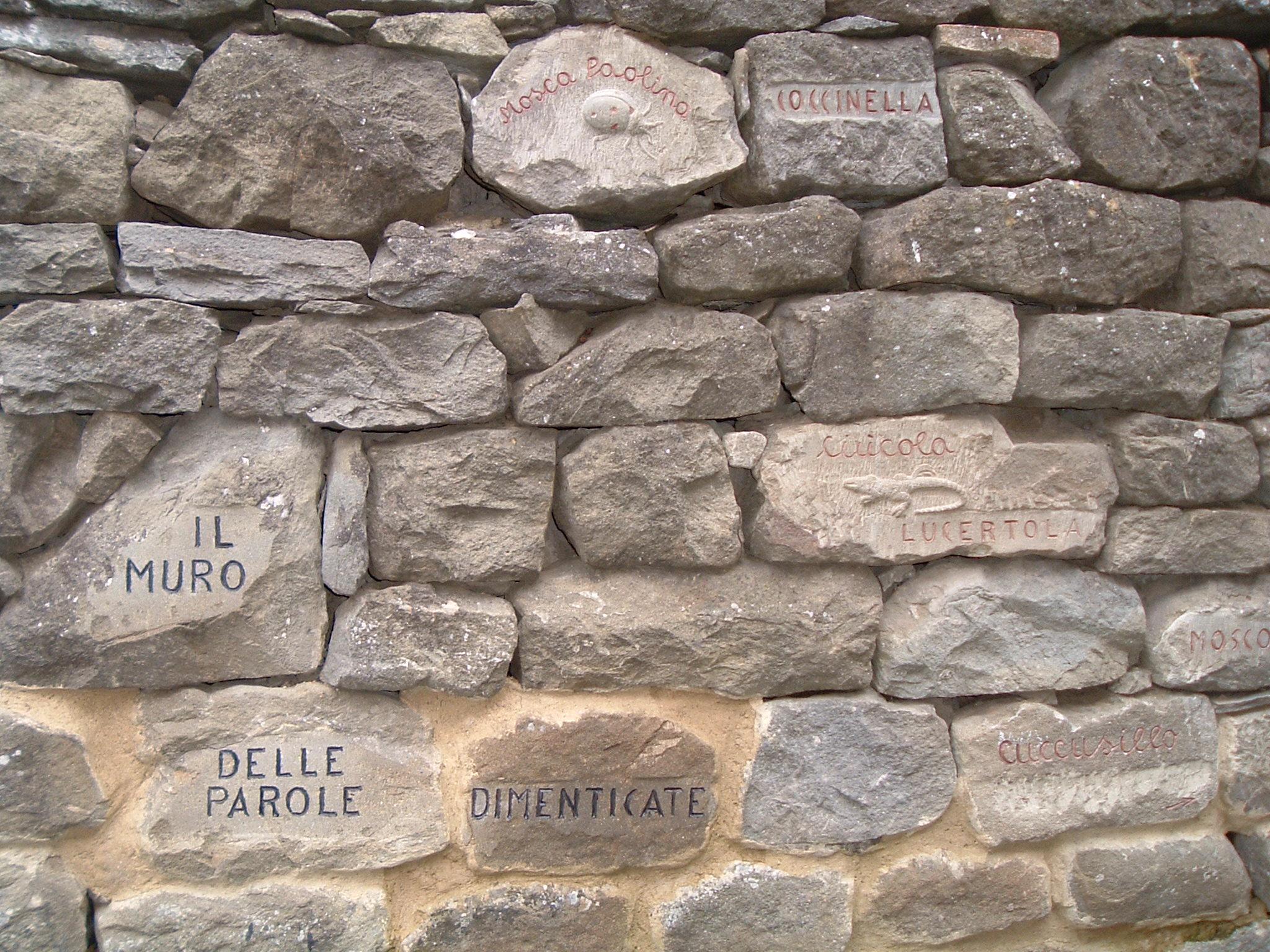 il muro delle parole dimenticate