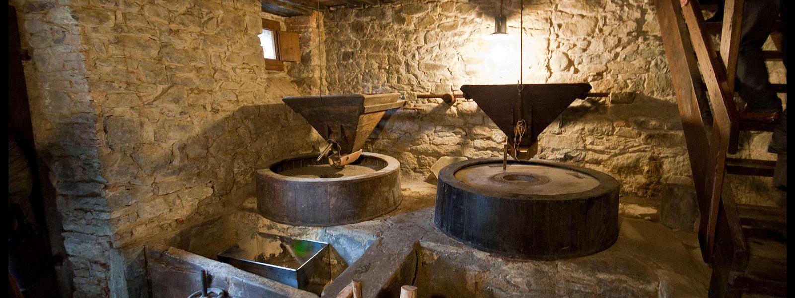 Museo della castagna e della transumanza